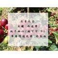 【咖啡生豆】衣索比亞 日曬 西達摩 桃子甜心/桃可可 G1 單層慢速乾燥 特別版