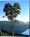 Hillside Arbutus By Ron Parker Canvas Art