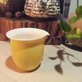 蔡曉芳—公道杯 早期黃色經典系列