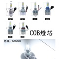 C6 高輝度LED大燈 COB燈芯 汽車LED大燈 優質 全系列