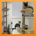 四層貓跳台頂天立地寵物玩具玩耍貓咪休息喵星人貓抓板支柱麻繩-扇形/平板【AAA1780】