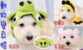 翔仁寵物工坊~寵物精品百貨【可愛動物變身帽/寵物帽/安全帽】3款可選
