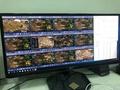 「小胖便宜電腦」BS多開主機,AMD opteron 6378 16核CPU+64G ddr3 ecc reg