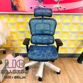 Ergohuman 111 單桿版 人體工學椅 網椅 鋁合金腳 雲彩網 現貨秒發 保固 電腦椅