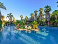 住宿 Desert Palms Alice Springs 艾麗斯泉沙漠棕櫚飯店