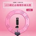LED網紅直播環形補光燈12吋/60W-粉