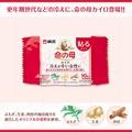 日本 小林製藥 桐灰 命之母 生理溫熱貼布 10入/包 生理 溫熱 貼布【特價】異國精品