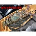 木製日式壽司船 豪華刺身 生魚片 刺身 壽司拼盤 日式餐廳 酒店 飯店
