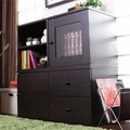 [Seller Installation] High Quality/Fashion Design storage cabinet/ TV console (Two color options and total 2 different type of combo)(Dark Coffee)  (Dark Coffee)