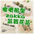 【橄欖船型zakka盆栽花盆《白色/長25.5cm》】多肉盆栽 簡約  陶瓷 (4.6折)