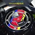 摩托車GSX250R裝飾品創意改裝油箱貼花鑰匙圈貼防水靈獸反光貼紙