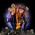 二次元 手辦娛樂收藏正版SHF虎面人 黑虎Tiger Mask W The Dark摔跤人非筋肉人手辦金證 公仔經典懷舊
