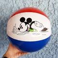 ลูกบอลชายหาด
