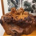 臺灣黃檜釘仔瘤(釘子瘤) 荷葉上的豬全家福 附證書需自取