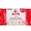 【樂購RAGO】腹部溫熱貼 桐灰x小林製藥 命の母 命之母 貼式暖暖包 10枚入 日本製