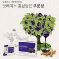 韓國 正官庄 高麗蔘黑棗精華飲 紅蔘黑棗飲 濃縮口服液 禮盒組 7g 30包