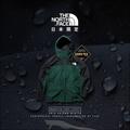 *ZEUS*The North Face Mountain Light Jacket NP11834/GTX防水山岳外套
