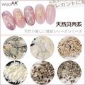 光療美甲小舖 💄 💄  [現貨不用等💢] 日系新款鮑魚片 美甲天然貝殼片貝殼粉系列