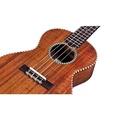 Cordoba Guitars 25T Tenor Ukulele, Tenor / From USA