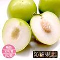 《沁甜果園SSN》精品蜜棗5台斤/箱(共2箱)(禮盒預購)