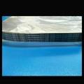 TOYOTA WISH 10-16 ALTIS 07-16 6PK1230 綜合皮帶/外皮帶 850元