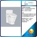 HCG 和成 單體馬桶 單體馬桶+免治馬桶座 C5519NAdbMUST-AF910