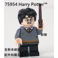 【群樂】LEGO 75954 人偶 Harry Potter™ 現貨不用等
