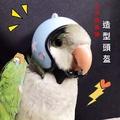 寵物迷你安全帽 鸚鵡用品  倉鼠🐹等小寵造型安全帽
