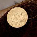 美國金幣Bitcoin比特硬幣金幣比特b外國硬幣虛擬紀念幣硬幣小禮物