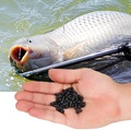 ตะขอเบ็ดตกปลาอุปกรณ์ตกปลา