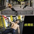 ~廣隆~TRX懸掛式訓練帶 拉力繩 健身 力量 腿部訓練 拉力器 瑜珈繩 阻力繩 阻力器 瑜珈伸展 重量訓練