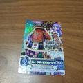 偶像學園 稀有卡片 PR卡(2)