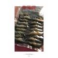 🦐泰國蝦真空包裝(需冷凍)