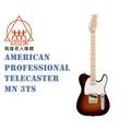 【名人樂器】Fender 美廠 American Professional Telecaster MN 3TS 電吉他