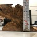 黃檜 釘瘤 創作料 --黃檜 肖楠 瘤 之家--