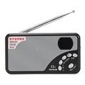 Tecsun A3 Digital FM Radio Receiver Speaker Support TF Card