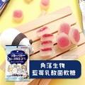 日本 HAYAKAWA 角落生物乳酸菌軟糖-藍莓風味 40g 軟糖 糖果 造型 現貨