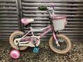 捷安特 Giant pudding 12吋兒童車兒童腳踏車