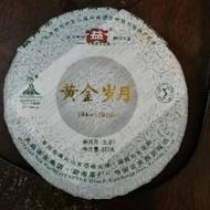 大益2010年黃金歲月普洱茶 生茶