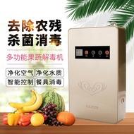 台灣現貨 110V 家用多功能蔬果消毒機 活氧機 臭氧清洗機 洗菜機空氣淨化器蔬菜解毒機 蔬果解毒機 臭氧機