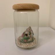 二手 小魚缸 迷你魚缸 玻璃罐 造景魚缸