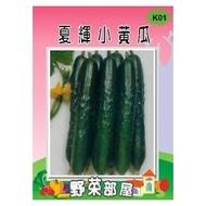 【野菜部屋~】K01 日本夏輝小黃瓜種子8公克裝(約400顆種子) ,多收品種 , 市場評價高~