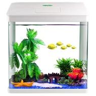 【夏日上新!】小型金魚缸家用小魚缸迷你水族箱桌面生態魚缸免換水懶人魚缸造景