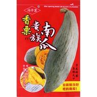 家庭菜園種子 香栗貴族南瓜種子 粉甜面好吃 板栗味牛腿南瓜 金絲栗瓜 蔬菜種籽 熱賣 特價 優惠