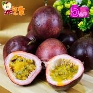果之家 南投埔里嚴選紫香百香果禮盒5台斤(春節禮盒)