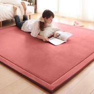 出口日本等級 日本原單 200*300CM 高級纖細珊瑚絨地毯/ 爬行墊/ 遊戲墊/ 榻榻米墊/ 運動墊/ 瑜珈墊/ 地墊 (客制訂做款)