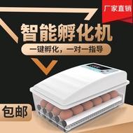 IncubatorSmall household water bed incubatorIntelligent egg incubatorMini incubatorChicken pigeon egg incubator