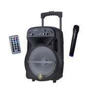 Avcrowns Bluetooth Rechargeable Trolley Speaker  Bluetooth Mode function USB/TF card music support FM Radio with MIC
