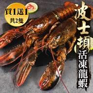 【海鮮王-買2送1】加拿大波士頓龍蝦2隻 (500g±10%/隻)_加碼再贈波龍