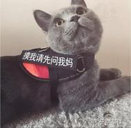 貓繩 貓咪牽引繩防掙脫專用溜貓繩栓貓遛貓繩胸背帶項圈小貓繩子貓鍊  MKS 第六空間